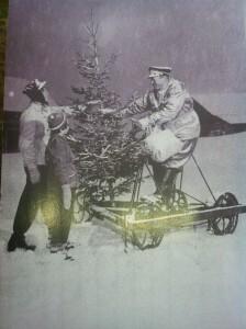 Henting av juletre