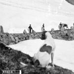 Menn og hestar på anleggsvegen ved Hallingskeid (juli 1902)